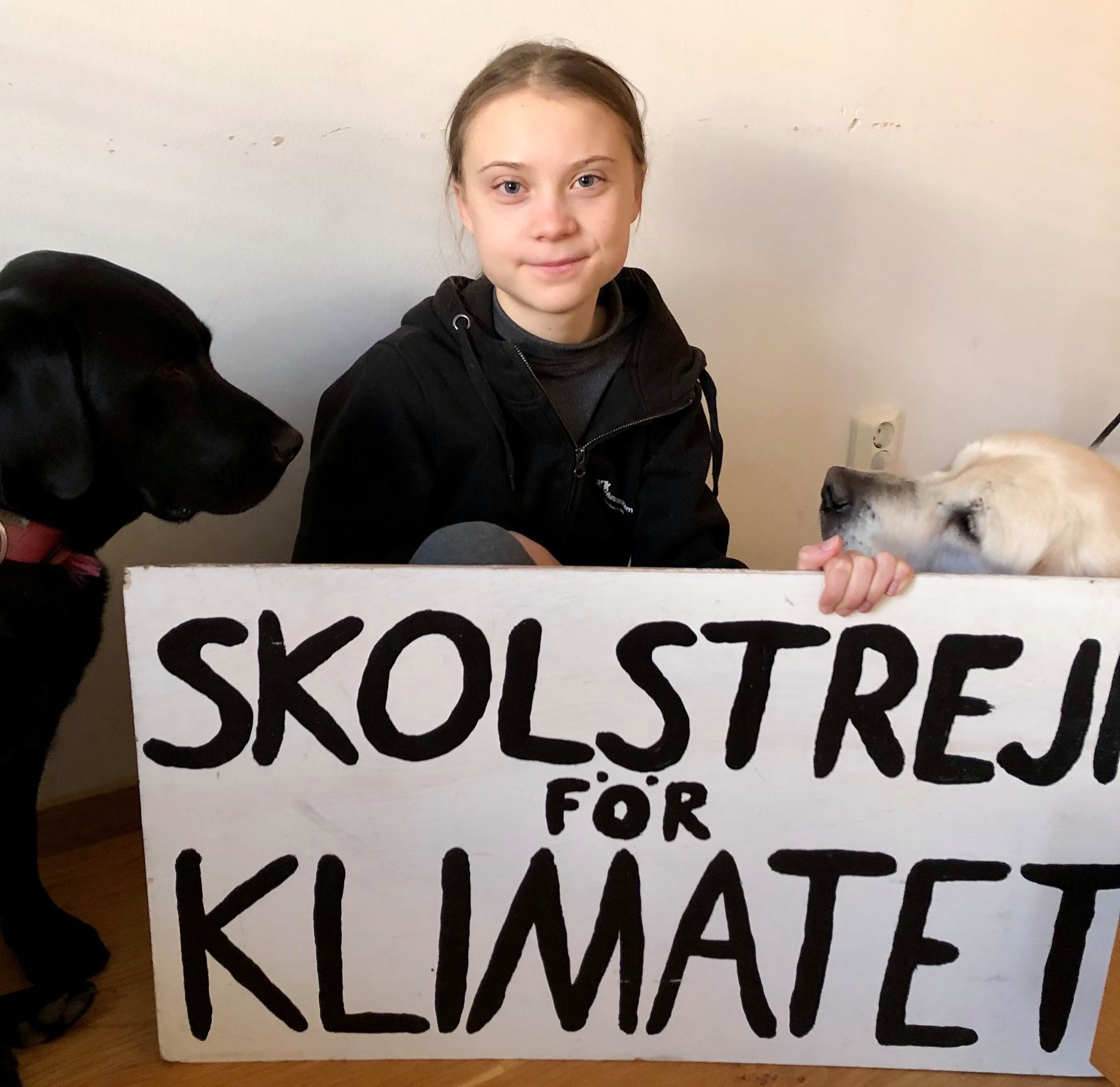 Greta Thunberg Launches 'Talks For Future' As Climate Strikes Continue Online