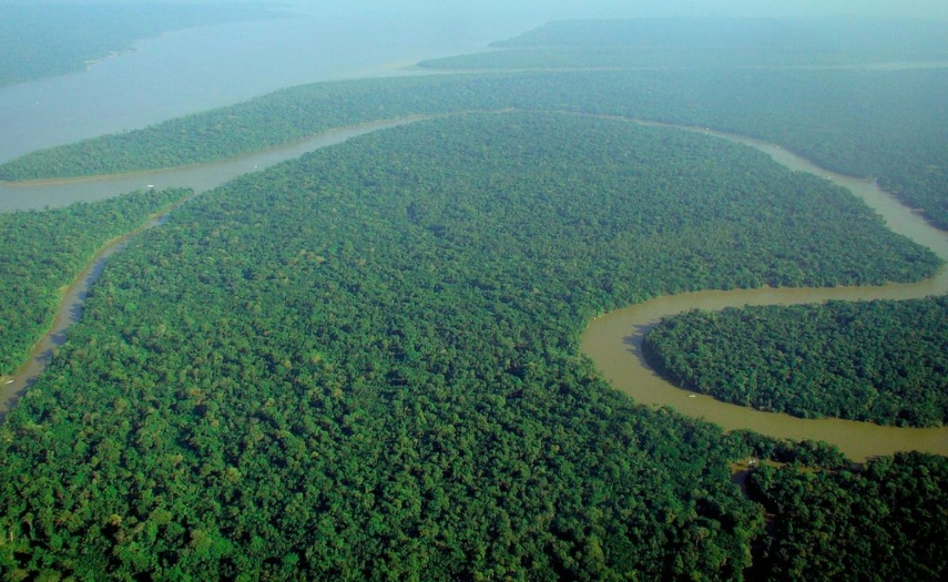1024px aerial view of the amazon rainforest 1