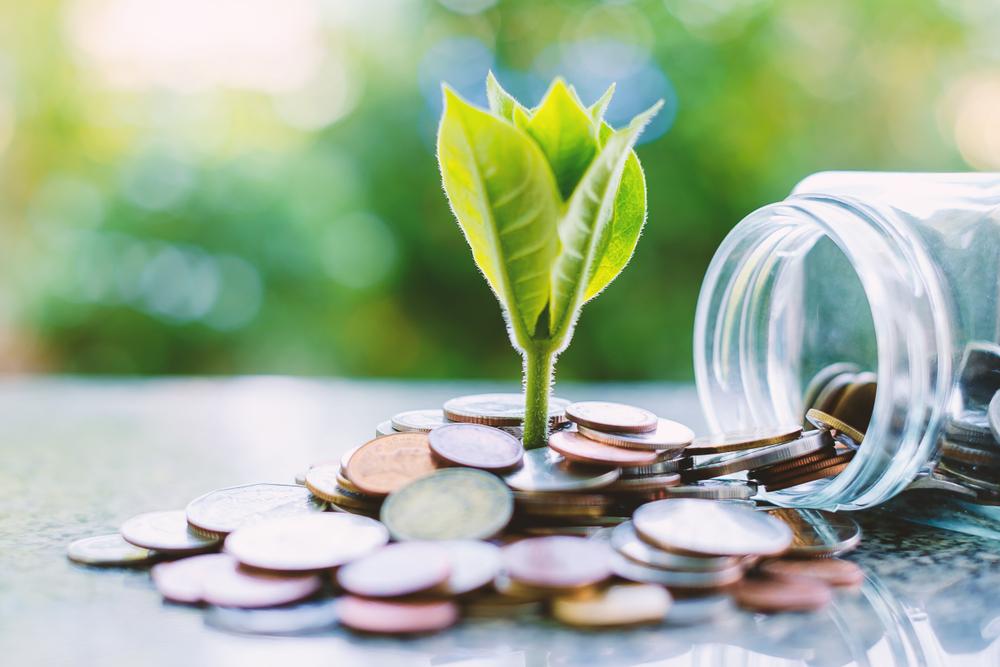 Rethinking Sustainability Within Middle Eastern Banks