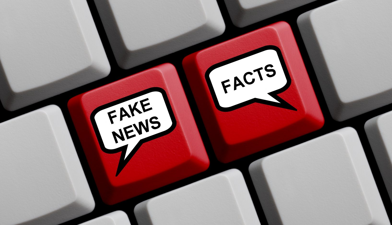 The Power of Novelty and Fake News: Lessons for Corporate Leaders